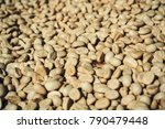 close up of dry coffee bean | Shutterstock . vector #790479448