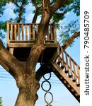 Vintage tree house with circle rubber staircase