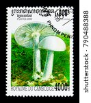 Small photo of MOSCOW, RUSSIA - NOVEMBER 24, 2017: A stamp printed in Cambodia shows Amanita verna, Mushrooms serie, circa 2000