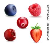 realistic berry set. strawberry ... | Shutterstock .eps vector #790503106