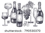 vintage hand drawing on subject ... | Shutterstock .eps vector #790530370