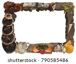 dry organic picture frame... | Shutterstock . vector #790585486