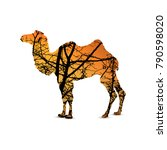 silhouette of camel with... | Shutterstock . vector #790598020