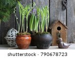 Floral Spring Composition With...
