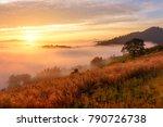 landscape sea of misty in dawn...   Shutterstock . vector #790726738