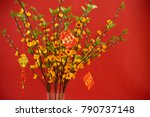 lucky red envelopes hanging on... | Shutterstock . vector #790737148