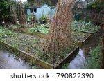 An Garden Allotment After Heav...