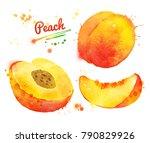 hand drawn watercolor...   Shutterstock . vector #790829926