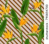 bird of paradise tropical... | Shutterstock .eps vector #790854700