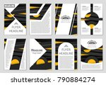 abstract vector layout... | Shutterstock .eps vector #790884274