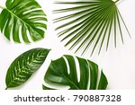 creative tropical fresh palm... | Shutterstock . vector #790887328