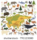 flat asian flora and fauna map... | Shutterstock .eps vector #791123380