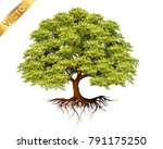 tree with a realistic.trees... | Shutterstock .eps vector #791175250