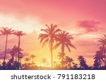 copy space of silhouette... | Shutterstock . vector #791183218