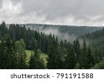 view on the foggy woods and... | Shutterstock . vector #791191588