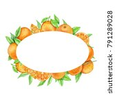 oval frame of oranges.... | Shutterstock . vector #791289028