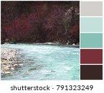 color palette. harmonious... | Shutterstock . vector #791323249