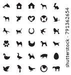 Stock vector vector pets set 791362654