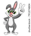 bunny or rabbit wearing...   Shutterstock .eps vector #791374804