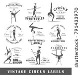 set of vintage circus labels.... | Shutterstock .eps vector #791433970