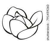vector vegetables black and...   Shutterstock .eps vector #791459260