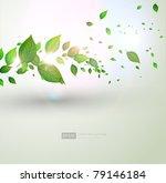 fresh green leaves and sun... | Shutterstock .eps vector #79146184