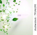 fresh green leaves and sun... | Shutterstock .eps vector #79146190