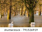 Flood In Deventer At The River...