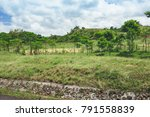 beautiful vibrant background... | Shutterstock . vector #791558839