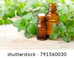 fresh peppermint leaves and... | Shutterstock . vector #791560030
