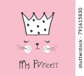 my princess cat vector... | Shutterstock .eps vector #791615830
