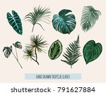 beautiful hand drawn  botanical ... | Shutterstock .eps vector #791627884