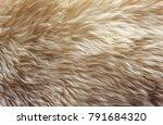 brown soft wool texture... | Shutterstock . vector #791684320