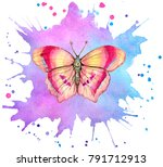 watercolor butterfly on abstact ... | Shutterstock . vector #791712913