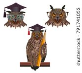 wise owls wearing a square... | Shutterstock .eps vector #791741053