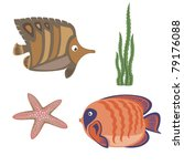 brown fish and orange fish ... | Shutterstock .eps vector #79176088