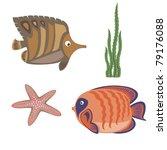 brown fish and orange fish ...   Shutterstock .eps vector #79176088
