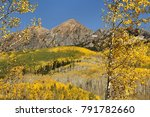 forground aspens and hills of... | Shutterstock . vector #791782660