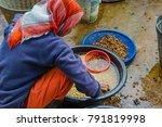 chiang rai  thailand   january... | Shutterstock . vector #791819998