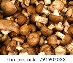 Fresh Mushrooms At Market ...