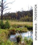 romincka forest beautifull ... | Shutterstock . vector #792055924