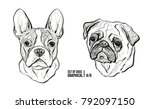 set of portraits of dogs.... | Shutterstock .eps vector #792097150