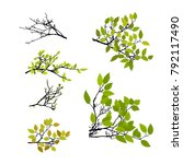 realistic set of tree branches... | Shutterstock .eps vector #792117490