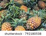 Ripe Juicy Yellow Pineapple...