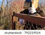 welder makes a fence in the... | Shutterstock . vector #792219514