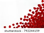 pattern of a red rose flower... | Shutterstock . vector #792244159