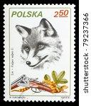 poland   circa 1981  a stamp... | Shutterstock . vector #79237366