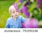 Small photo of Cute little blonde hair boy enjoy blooming lilac in the domestic garden in warm day. Seasonal kid allergy/atopy