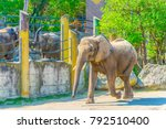 view of the elephant enclosure... | Shutterstock . vector #792510400