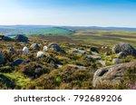 sheep grazing in the peak... | Shutterstock . vector #792689206
